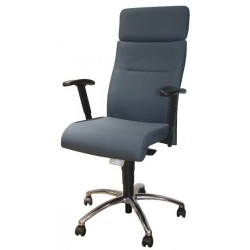 Executive office chair FD-D165